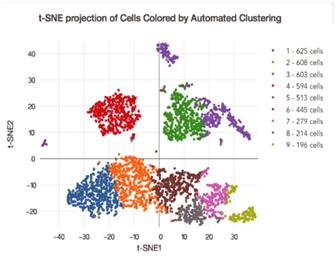 单细胞测序服务