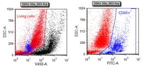 单细胞悬液仪_单细胞悬液制备